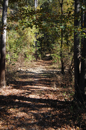 Cadillac Trail