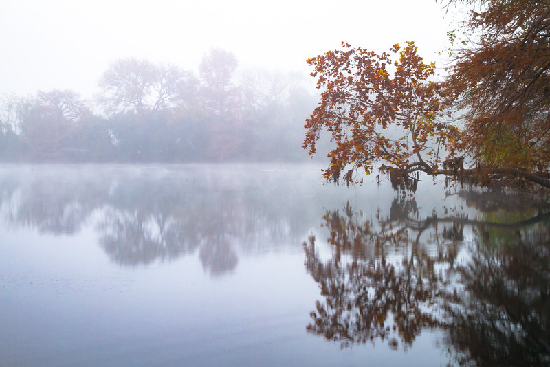 Foggy Spring Lake