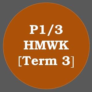 P1/3 HMWK T3