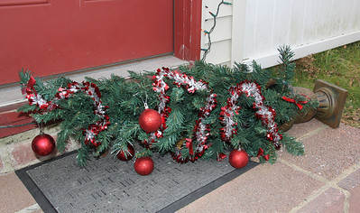 Fallen Christmas Tree, My House, Tamaqua (11-24-2012)