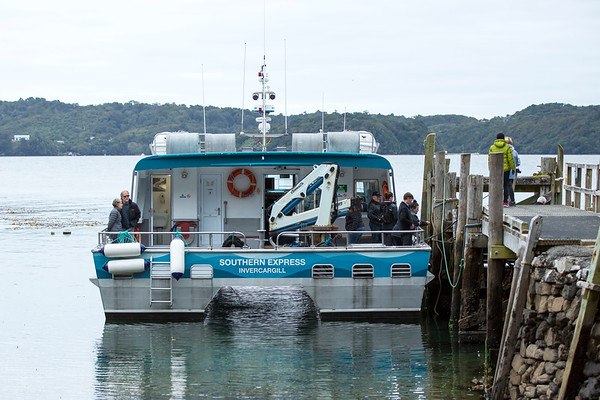 20170406 Ferry to Bluff - Stewart Island _JM_4141 a.jpg