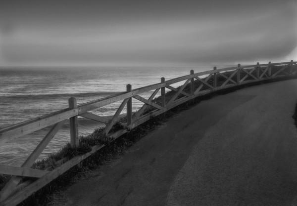 Natural bridges beach : Santa Cruz, CA
