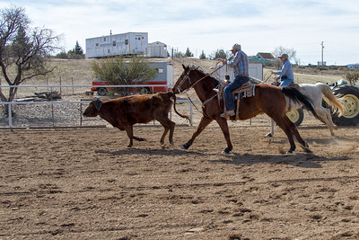2017-Sunday Roping-0016
