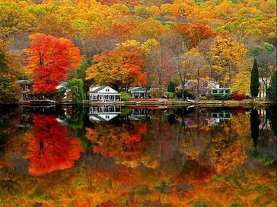 Pretty land scapes