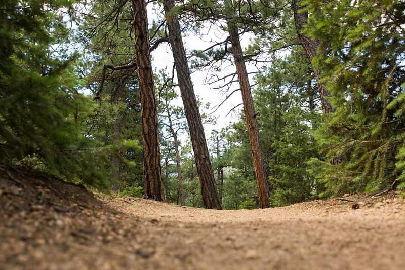 Colorado Springs-48.jpg