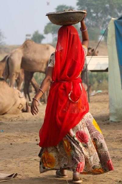 India-Pushkar-2019-8728.jpg