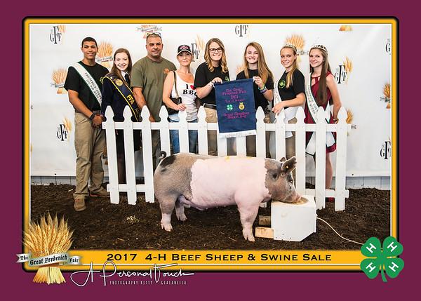 4_H beef sheep swine sale