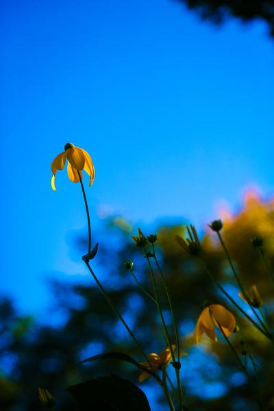 © Gloss Photography Studios-16.jpg