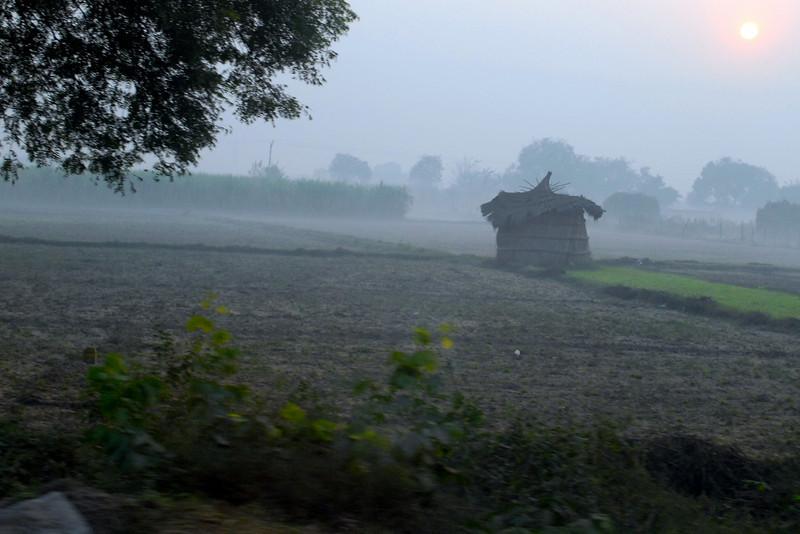 thatch house.jpg