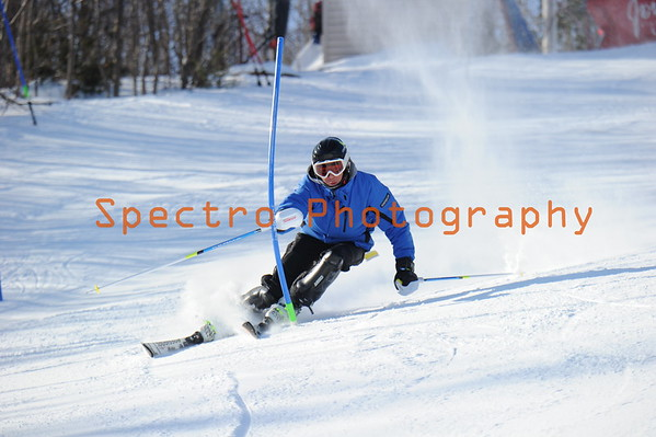 OFSAA Alpine 2015 Level II Mens Slalom