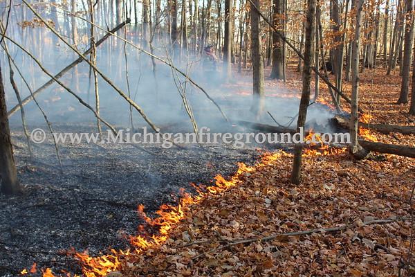 11/7/20 - Williamston wild land fire, 91 Waldo Rd