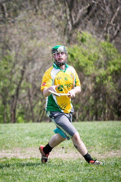 Hurling, AOH St. Charles, Tigin, 2017 (249 of 325).jpg