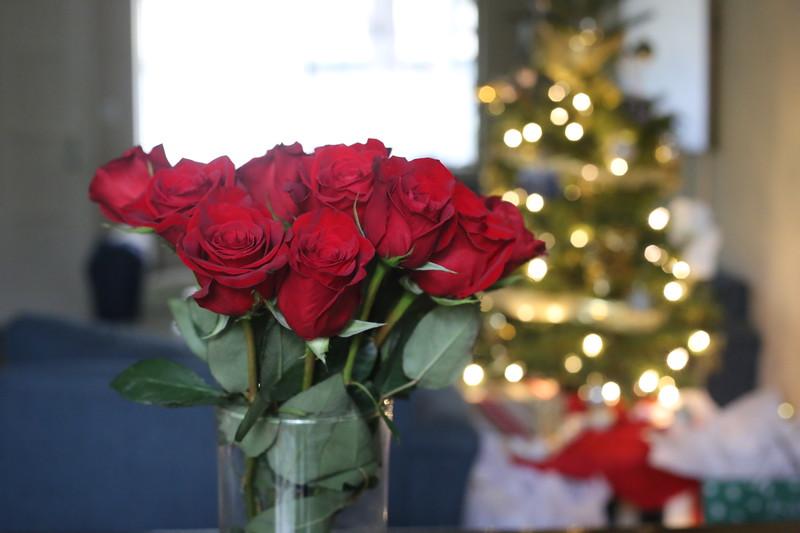 2019-12-22_ChristmasDecor-4426.JPG