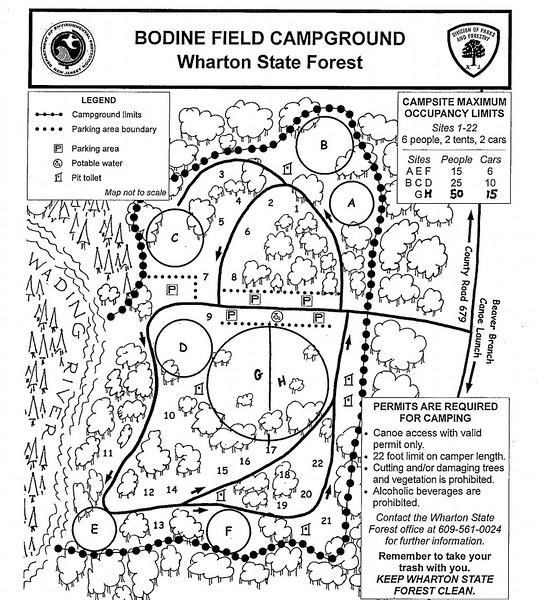 Wharton State Forest (Bodine Field Campground)