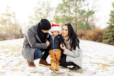 Winter Mini Session 2019 - Velasco Family