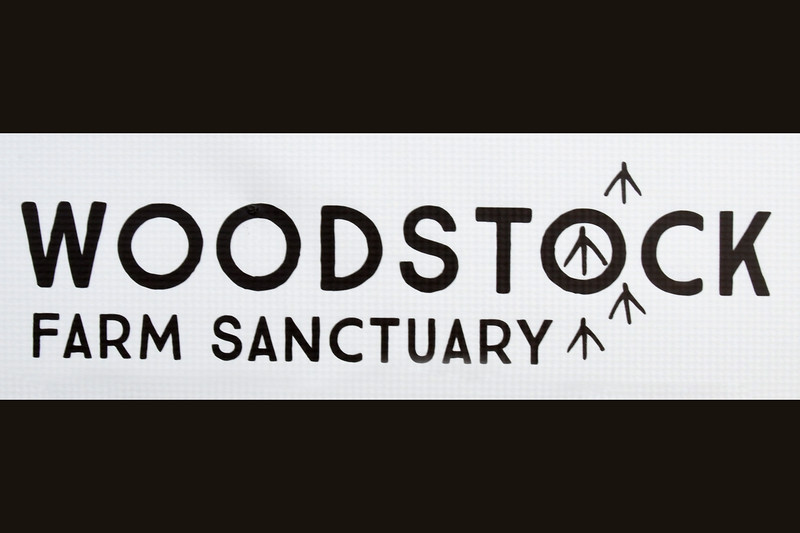 """VeganMos hosts the fourth and final """"Woodstock in Williamsburg"""" - Woodstock Sanctuary Fundraiser on June 16, 2018 in Brooklyn, New York."""