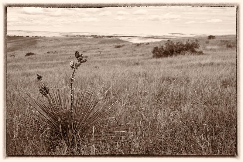 03_Little Big Horn_Montana-19.jpg