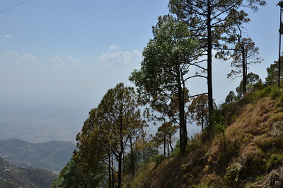 Kasauli - Part 2