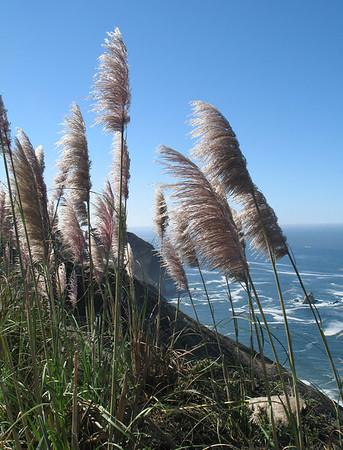 San Fran - Oct. 2006