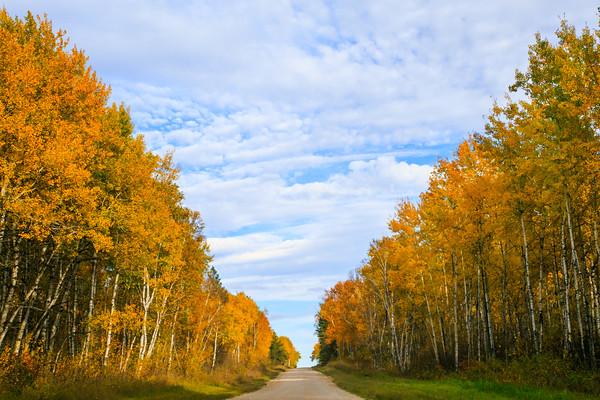Fall 2016 (Winnipeg Photographers)