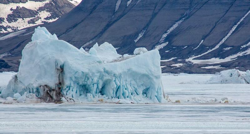 Svalbard - High Res-31.jpg