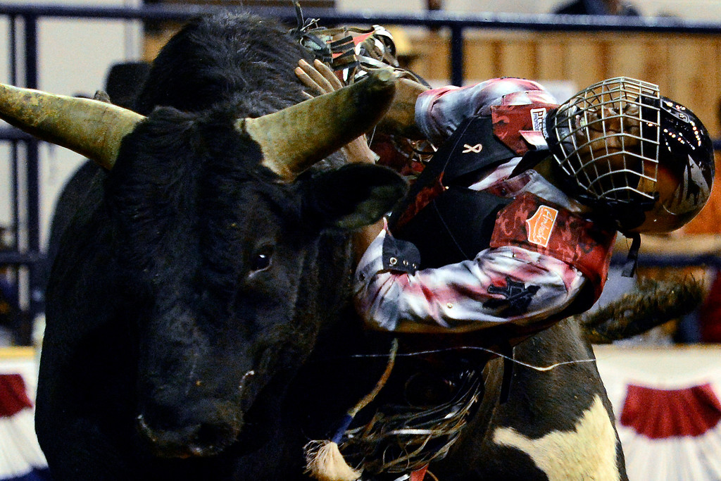 . DENVER, CO. - JANUARY 21:  Joe Stover hangs onto his bull during the bull riding performance. National Western Stock Show Martin Luther King Heritage Rodeo January 21, 2013 (Photo By AAron Ontiveroz / The Denver Post)