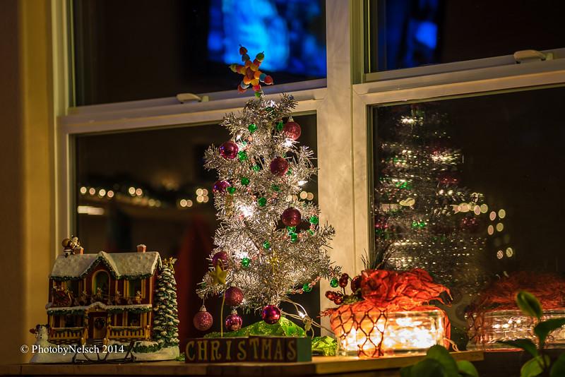 Christmas 2014-165.jpg