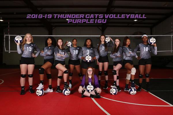 Purple 16U