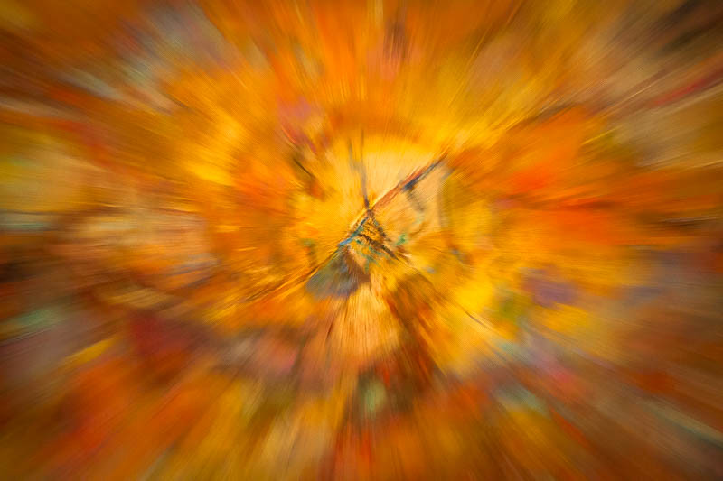 November 15 - Abstract of abstract.jpg