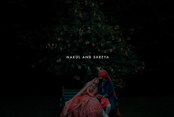 Nakul and Shreya | Udaipur 2019