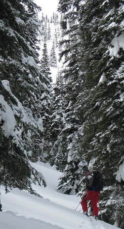 The Gorge, Malakwa, BC - March 2011