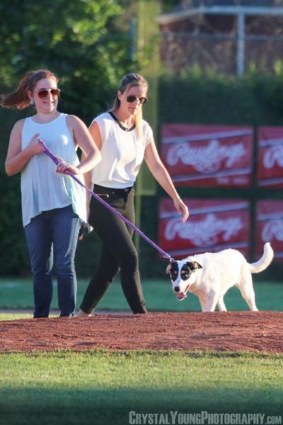 """Hamilton Cardinals at Brantford Red Sox """"Dog Days of Summer"""" Night"""