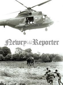 Marines rescue bullock