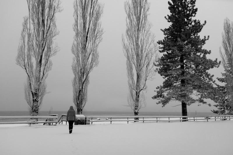 20120121_IMG_9876_Tahoe-Cabin-Snow-Austin-Camuntitled.JPG
