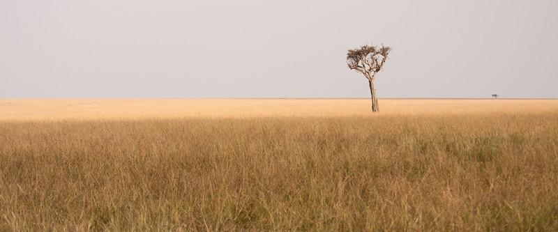 2013-Kenya2013-0718-9782.jpg
