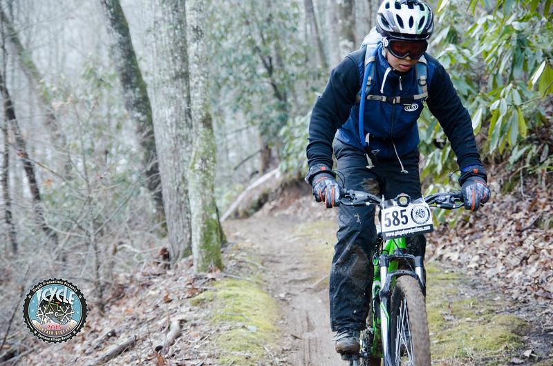 2015 Icycle-49.jpg