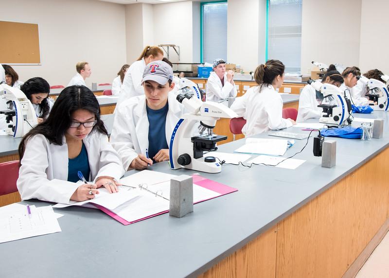 Tamucc Bio- Chemistry Class.