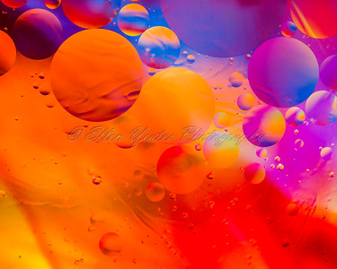 Oil & Water Photography