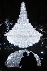 2010 Christmas Illumination