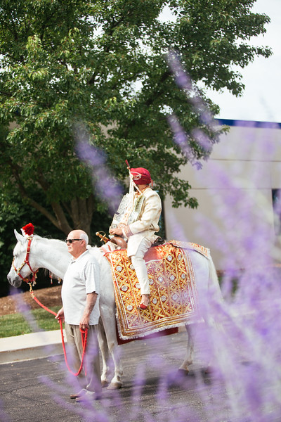 Le Cape Weddings - Shelly and Gursh - Indian Wedding and Indian Reception-297.jpg