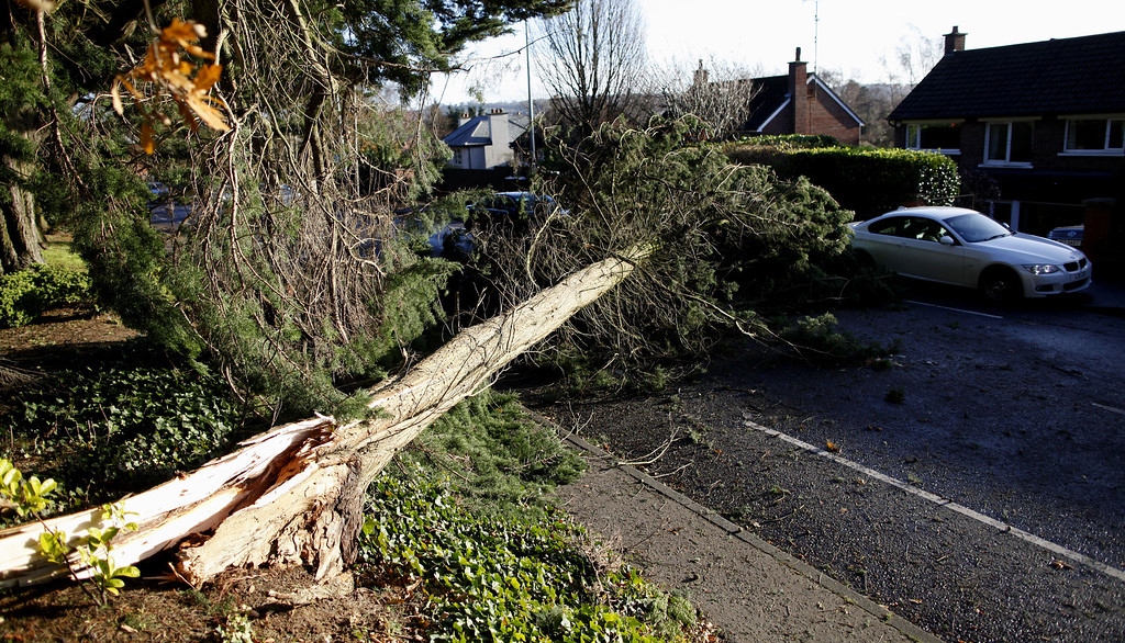 . A fallen tree blocks a road in South Belfast, Northern Ireland, Thursday, Dec. 5, 2013.  (AP Photo/Peter Morrison)