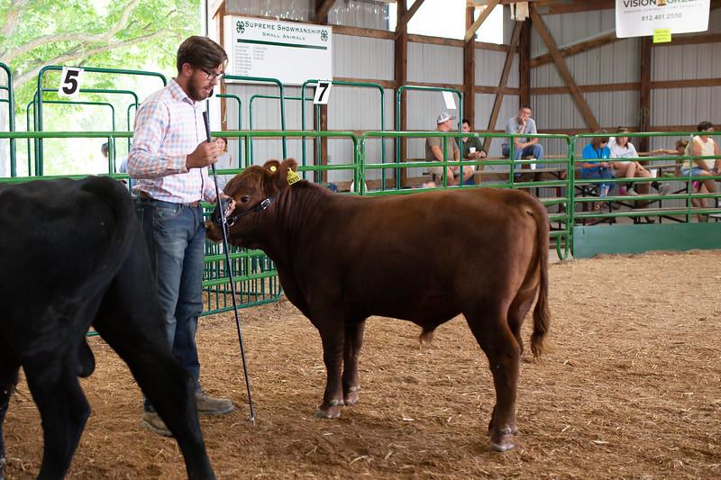 BeefShow-104.jpg
