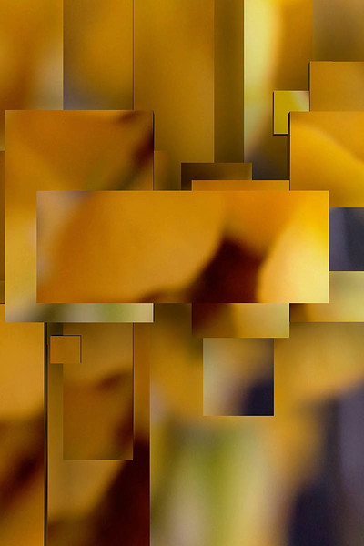 IMG_0005_2.jpg