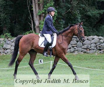 Beginner Novice Sr. Dressage