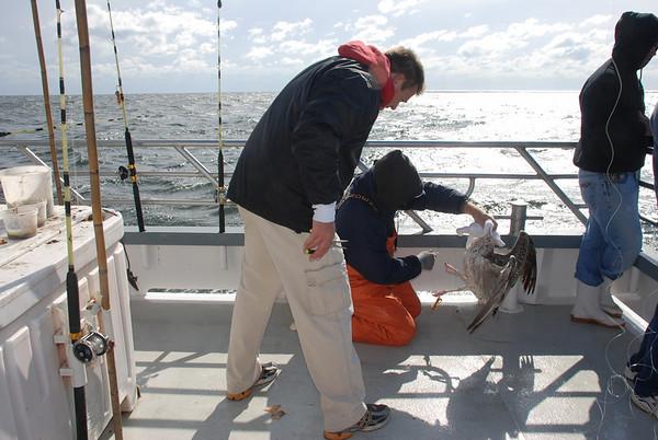 Alpharma's 3rd Annual Fishing Trip