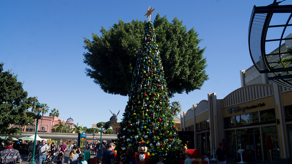 Disneyland Resort, Disneyland, Christmas, Holiday, Holidays, Christmas Time, Downtown Disney