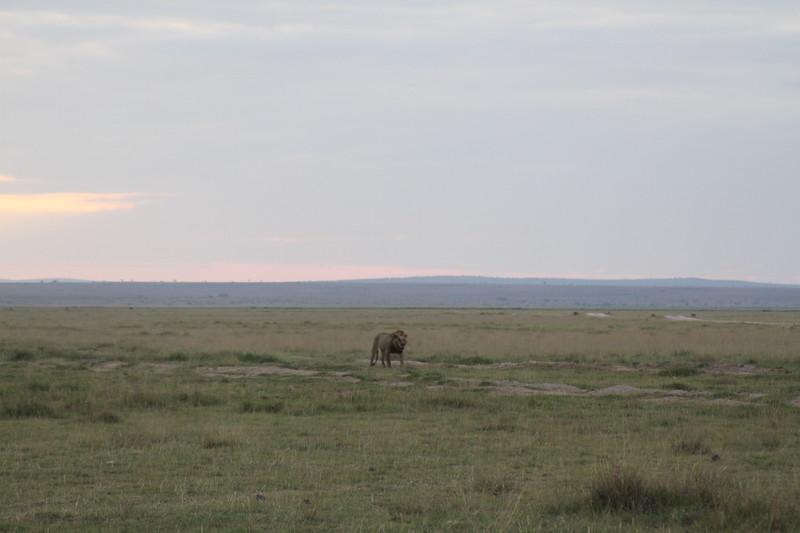 Kenya 2019 #2 1864.JPG