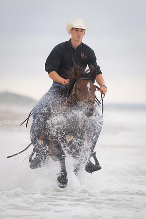 Horse Traders LLC