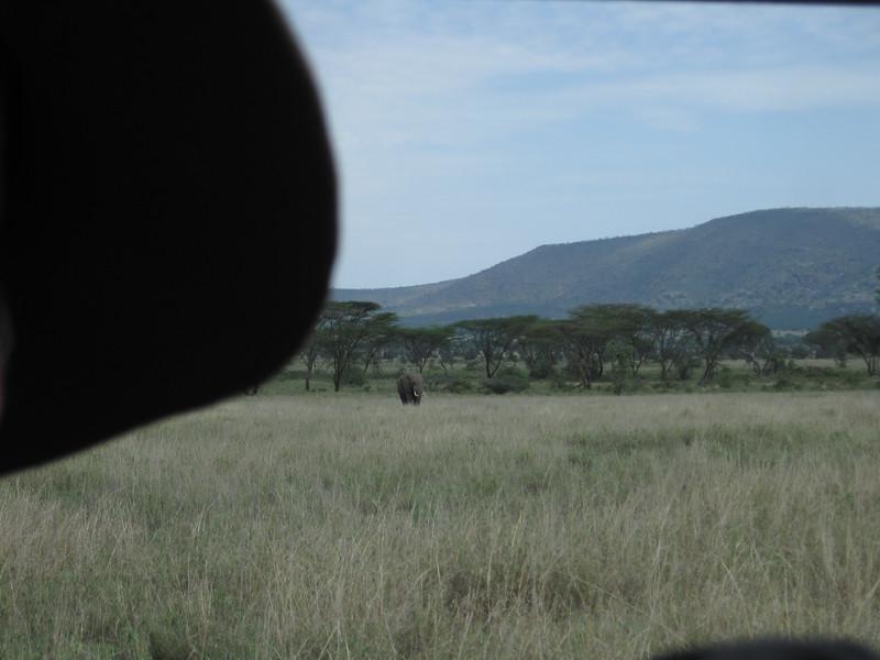 Tanzania14-3516.jpg