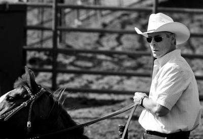 San Pasqual Valley Ranch Sorting - May 16, 2009